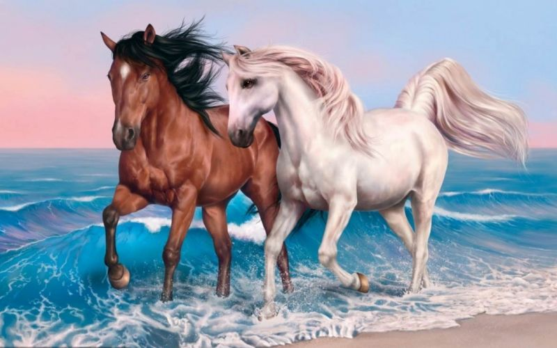 Beautiful horse couple running on the beach art painting wallpaper