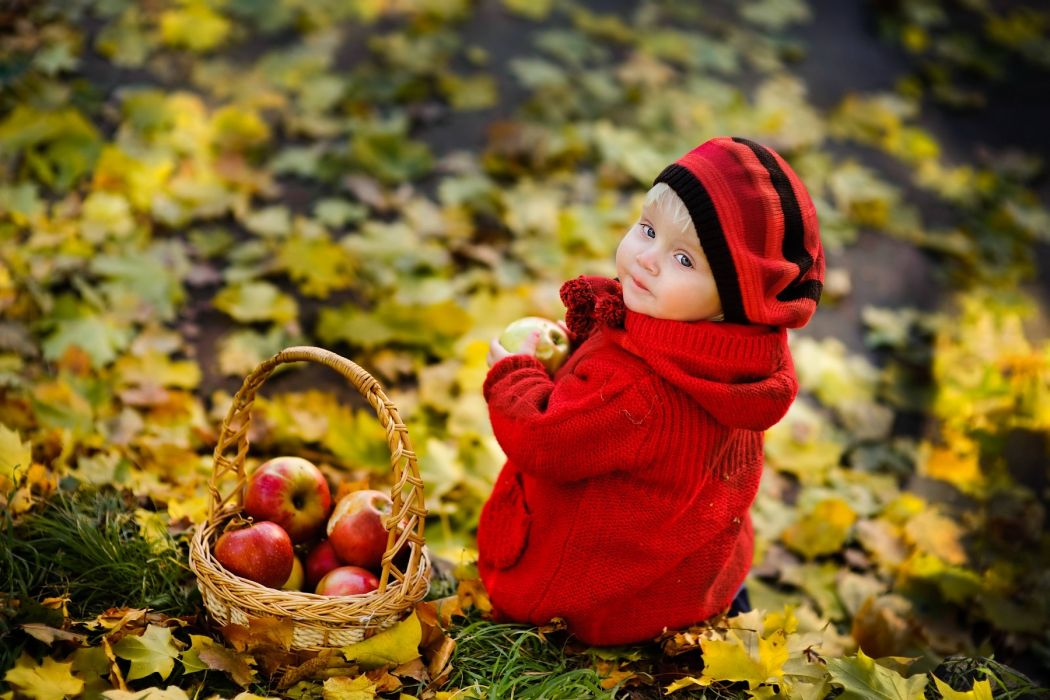 Red hat and red jacket cute baby innocent face and playing in autumn season forest wallpaper