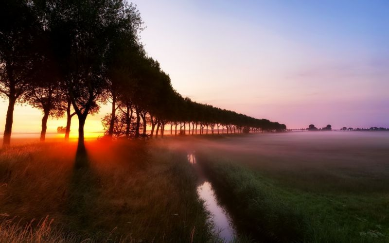 Landscapes mist nature rivers trees wallpaper
