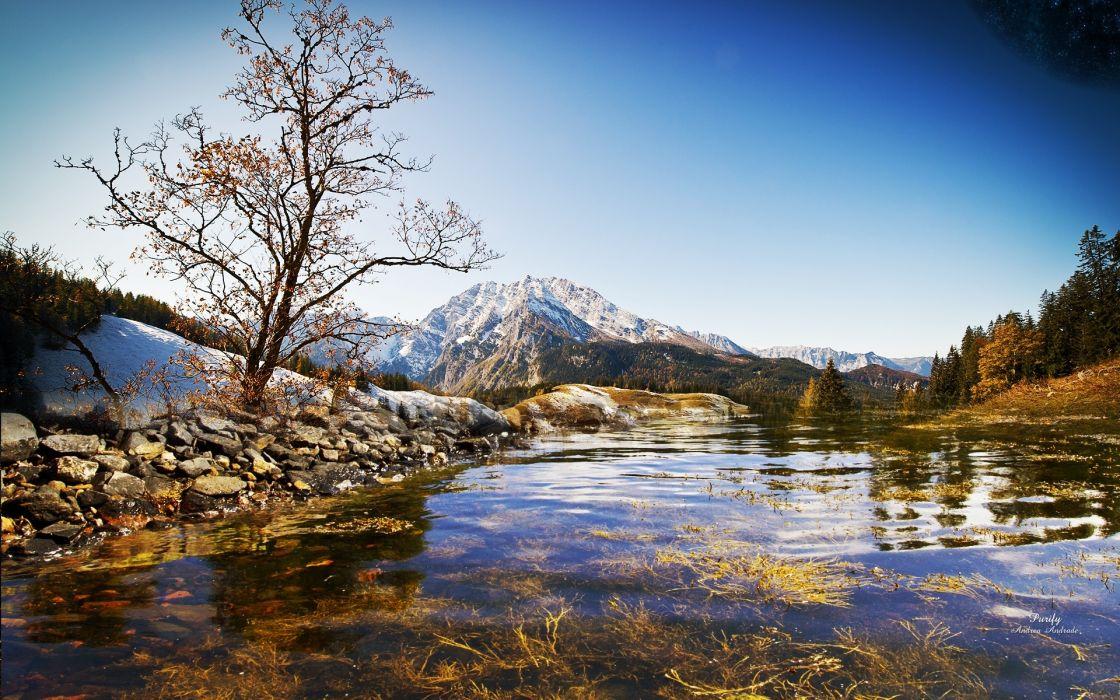 mountains tree river water transparent bottom vegetation bushes autumn silence wallpaper