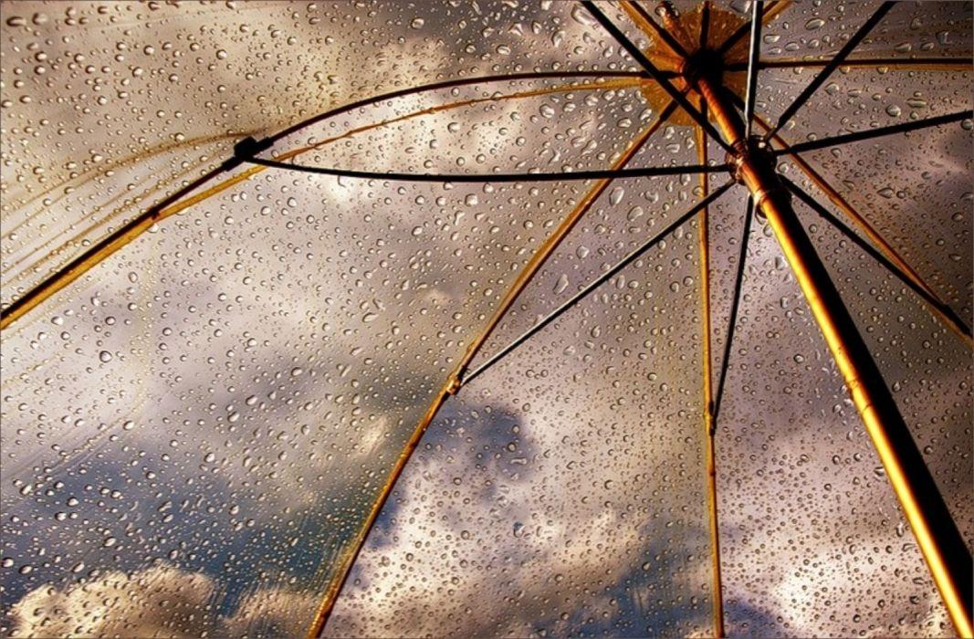umbrella rain drops wallpaper