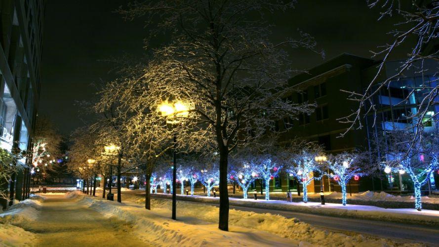 trees park winter ornament decor street night city wallpaper