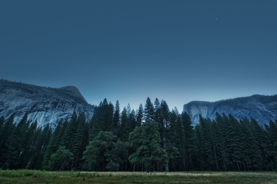 trees forest mountains usa california yosemite valley national park wallpaper