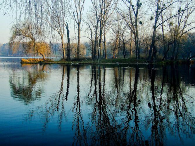 spring park trees water lake wallpaper