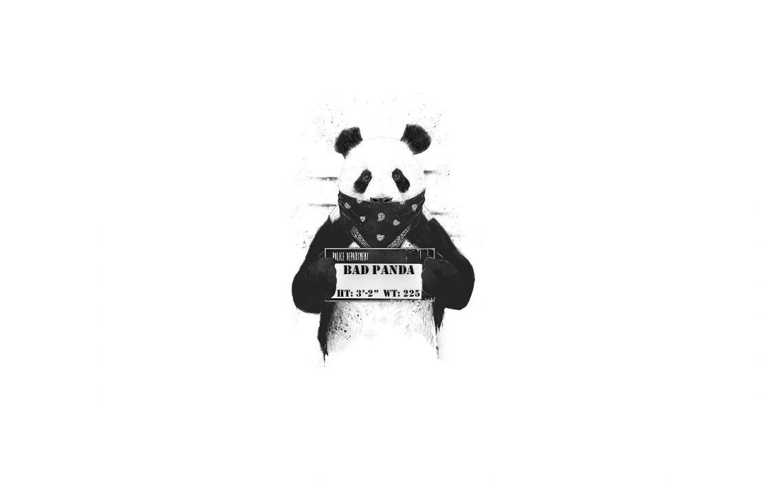 Bad Panda wallpaper
