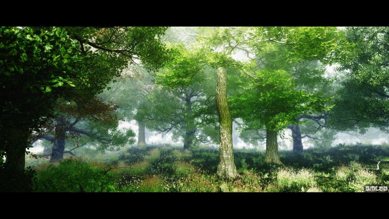 Deep Forest (2) wallpaper