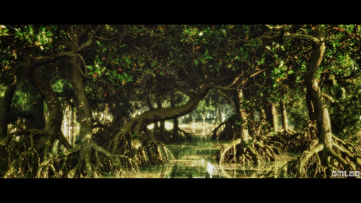 Mangrove Swamp wallpaper