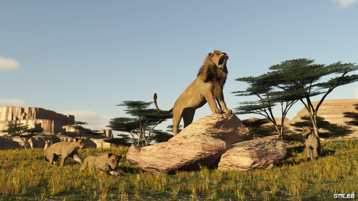 Proud Lion wallpaper