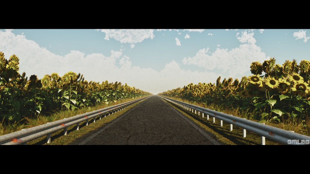 On the road through a field of sunflowers wallpaper