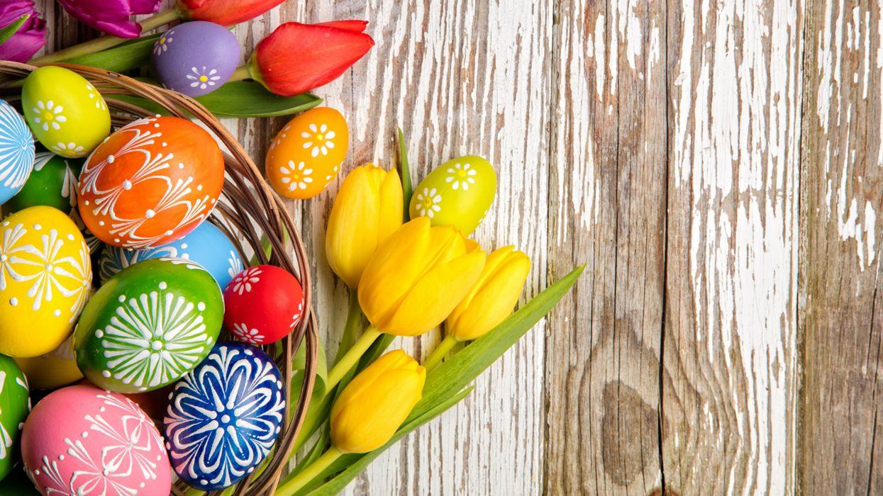 pascua huevos pintados tulipanes amarillos wallpaper