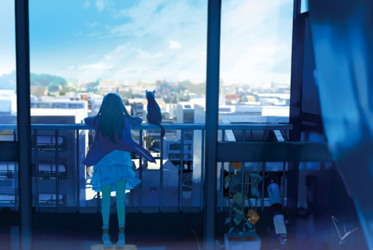 original anime girl long hair city cat wallpaper