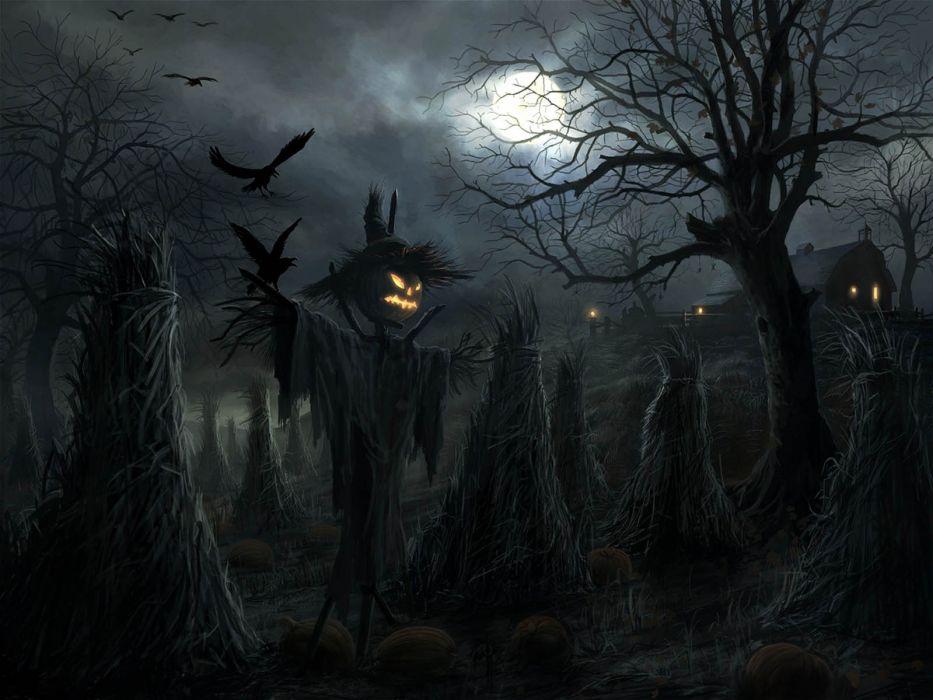 halloween horror noche terror wallpaper