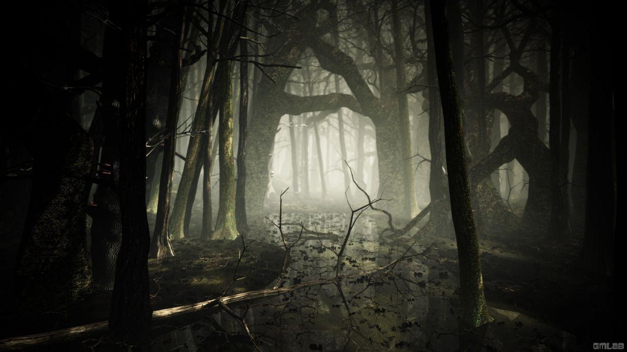 Dark foggy forest wallpaper
