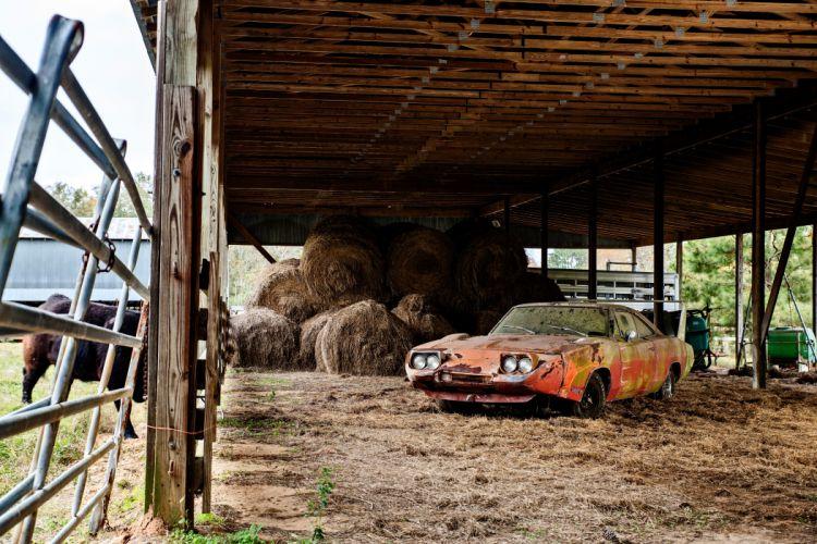 1969 Dodger Daytona Rusty Abandoned Forgotten Junkyeard Muscle Old Classic USA -03 wallpaper