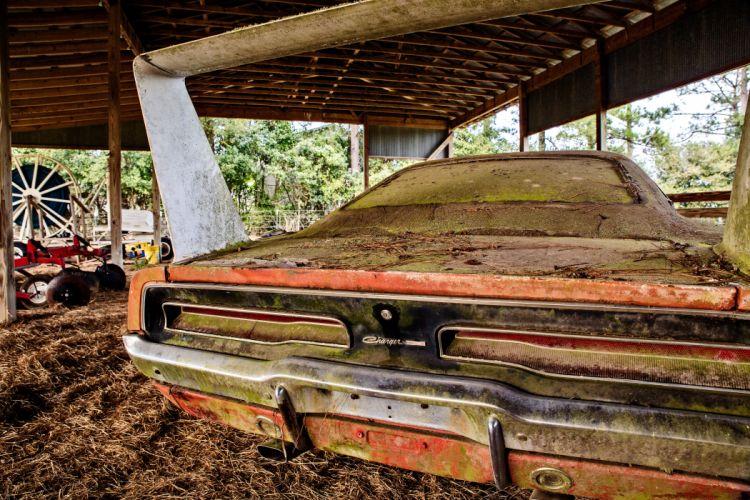 1969 Dodger Daytona Rusty Abandoned Forgotten Junkyeard Muscle Old Classic USA -17 wallpaper