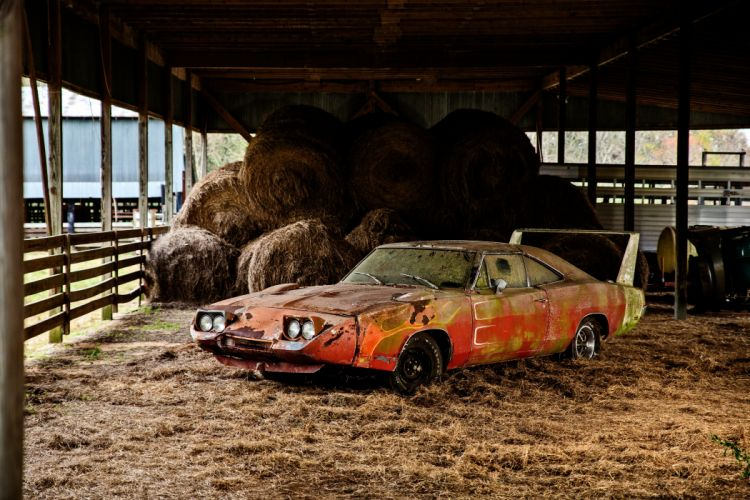 1969 Dodger Daytona Rusty Abandoned Forgotten Junkyeard Muscle Old Classic USA -36 wallpaper