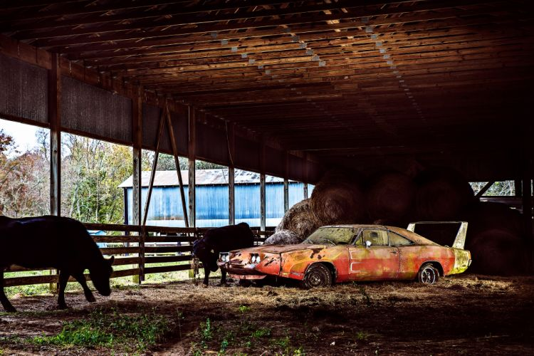 1969 Dodger Daytona Rusty Abandoned Forgotten Junkyeard Muscle Old Classic USA -67 wallpaper
