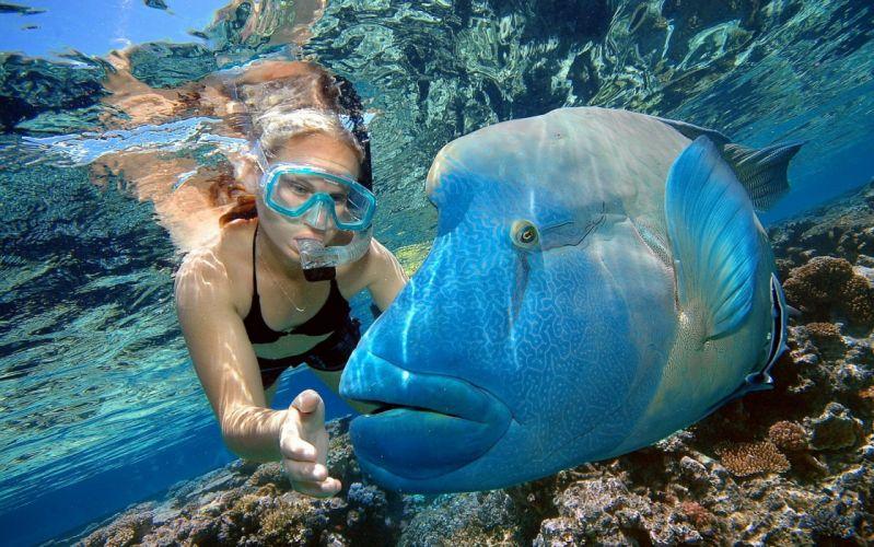 Photography fishing-girls-women-sexy-sensual-swimsuit-diving-underwater-fish-blue wallpaper