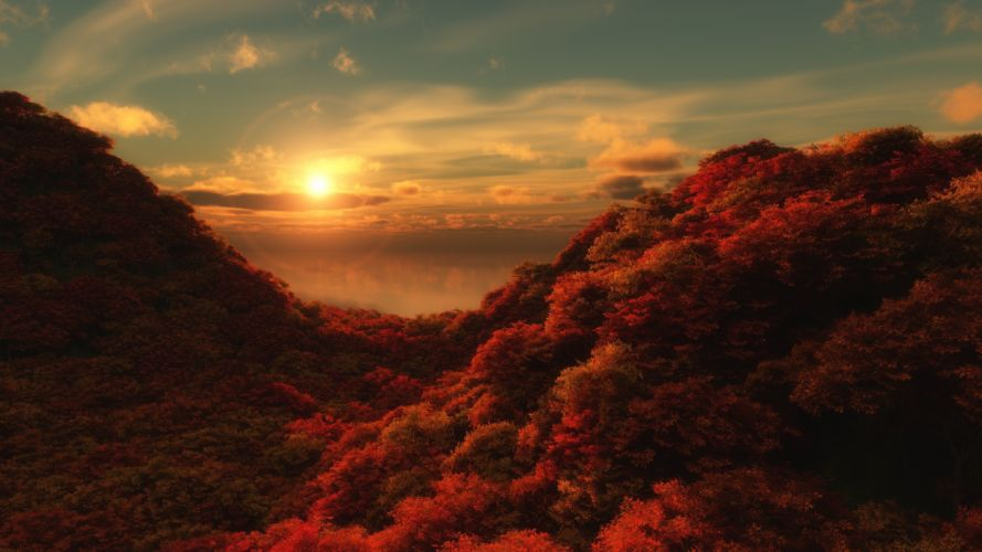 red tree sun sky clouds nature wallpaper