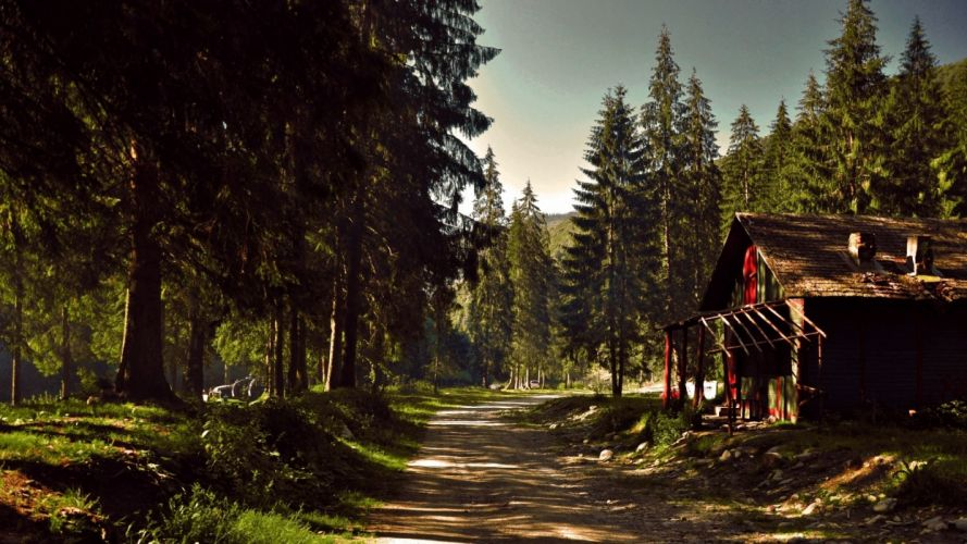 nature sunshine sky landscape forest house wallpaper
