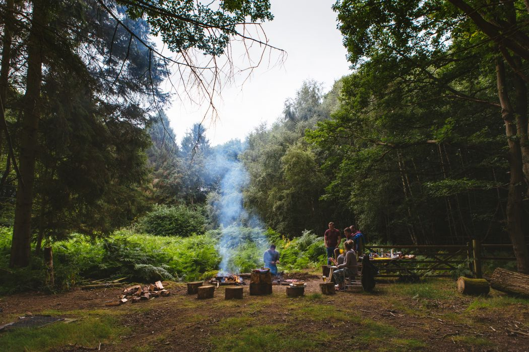 adult bonfire conifers daylight environment fir trees fire flame forest grass ground group landscape log man nature outdoors pants people pine trees recreation smoke soil travel trees woman wood logs wooden fence woods wallpaper