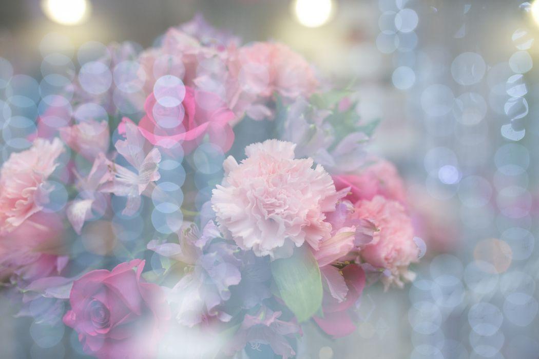 beautiful beautiful flowers bloom blooming blossom blur bokeh bouquet bright close-up delicate flora flower arrangement flowers leaves lights petals wallpaper