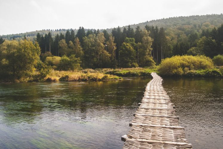 bridge forest lake nature outdoors path river scenic trees water woods wallpaper