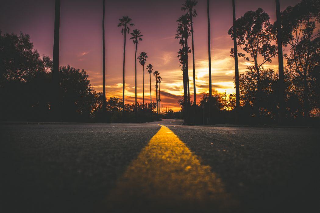 city dark dawn dusk evening landscape light pavement road silhouette street sun sunset travel trees wallpaper
