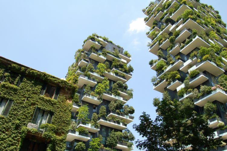 architecture buildings sky vine plants wallpaper