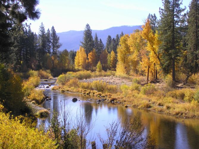 colorful conifer daylight environment evergreen fall forest grass lake landscape nature outdoors park reflection river rocks scenic season travel trees water wood wallpaper