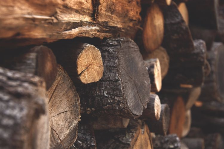 bark chopped wood dark details environment firewood fuel logs macro nature trunk winter wood wallpaper