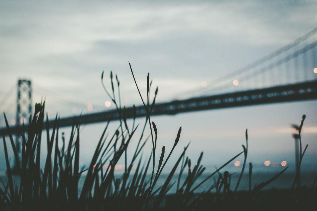 architecture bridge grass silhouette suspension bridge royalty free images wallpaper