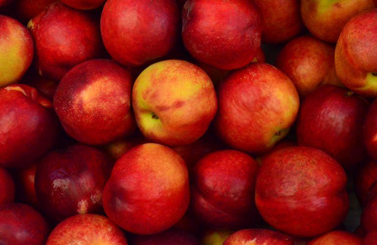 apples close-up food fruits wallpaper