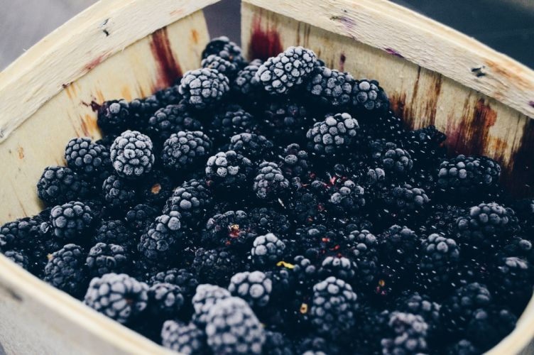 berry blackberry close-up container delicious epicure food fruit healthy juicy refreshment wood public domain images wallpaper