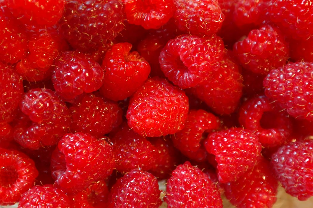 berries food fresh fruits healthy raspberries red wallpaper