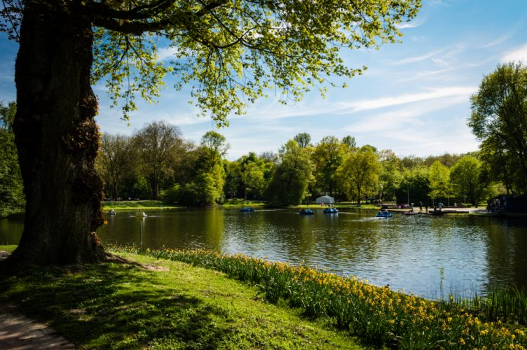 boats grass lake landscape outdoors park river scenic trees water watercrafts wallpaper