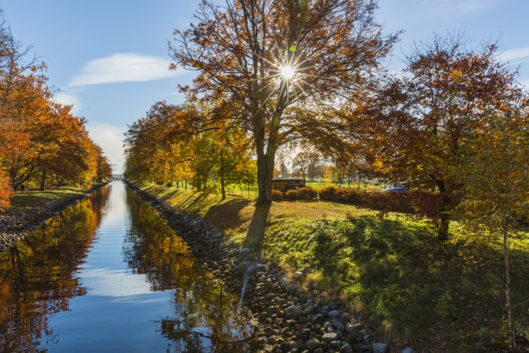 branches canal landscape nature outdoors park river rocks scenic sun glare trees water wallpaper