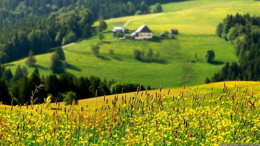 naturaleza paisaje valle casas prados verde wallpaper