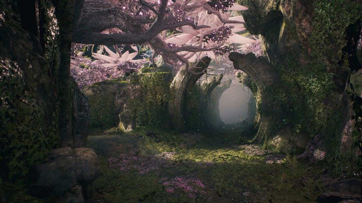 Paragon Fantasy Forest Jungle F1 Wallpaper 1920x1080