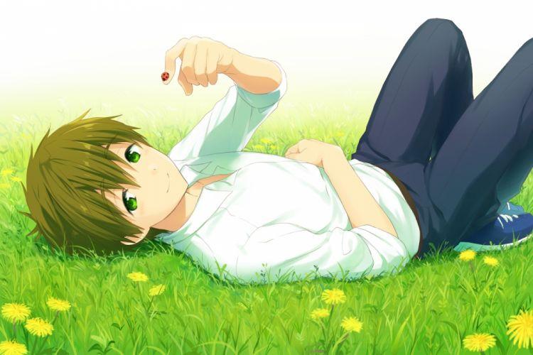tachibana makoto free lying down shoujo grass wallpaper