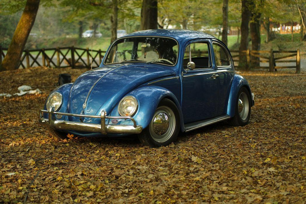autumn car classic leaves oldtimer park vintage volkswagen Volkswagen Beetle vw BurakKebapci wallpaper