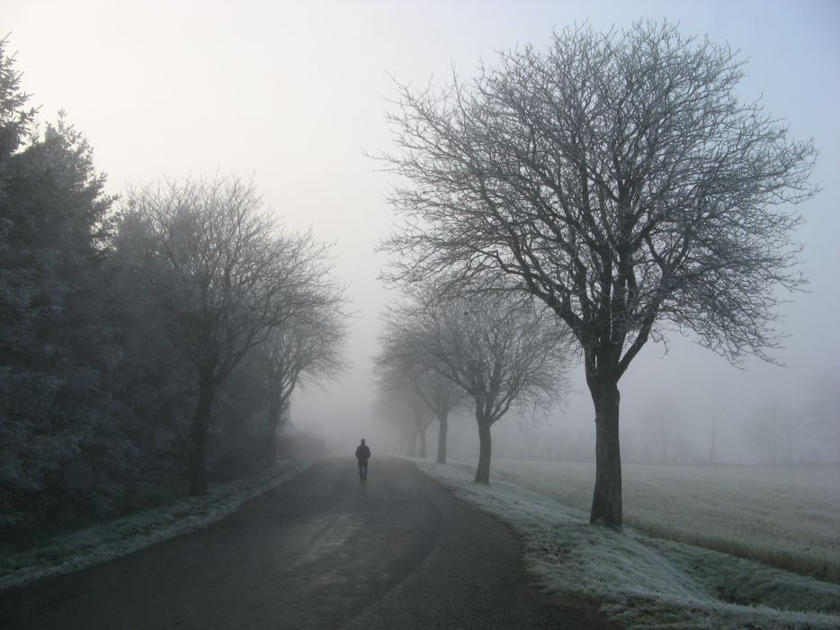 Alone Cold Foggy Freezing Frost Frozen Gloomy Hazy Ice Idyllic Misty Murky Peaceful Person Road Snow