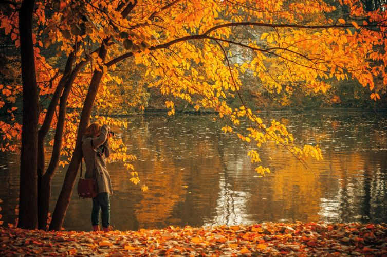 autumn brown fall lake leaves person photographer photography wallpaper