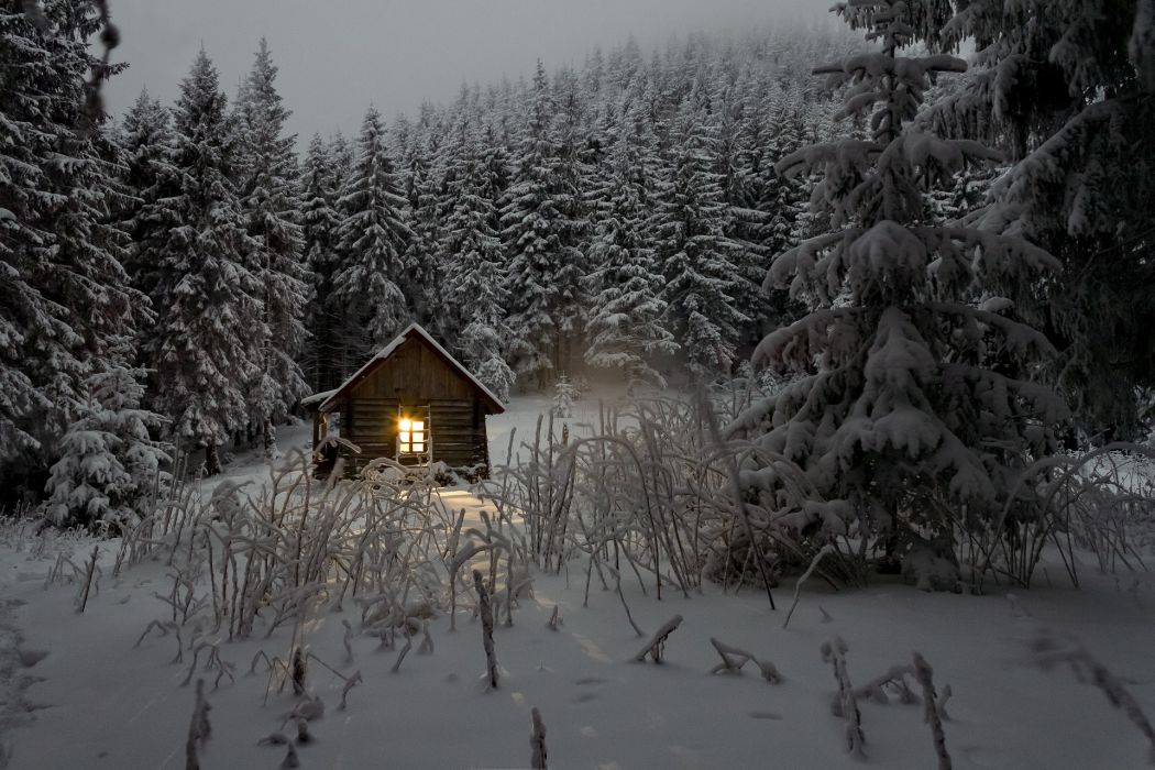 cabin cold forest nature snow trees winter wallpaper