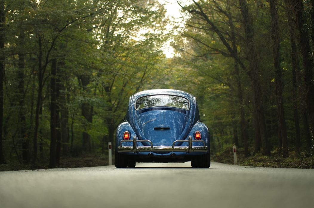 car classic car forest outdoors road travel trees vehicle vintage volkswagen Volkswagen Beetle wallpaper
