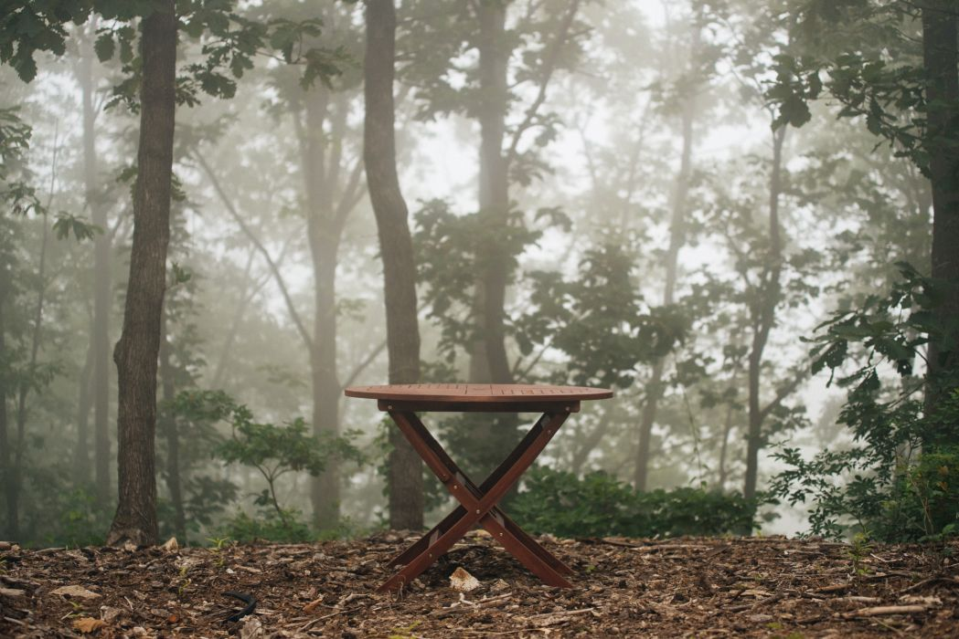 fog foggy forest table trees woods wallpaper