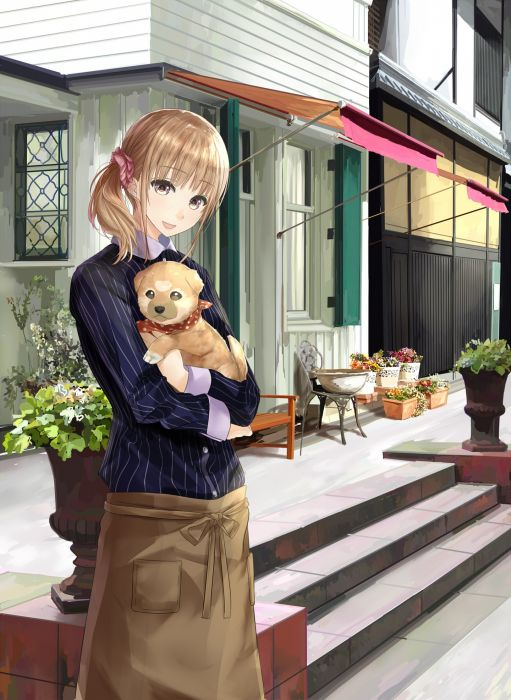 dog cafe blush looking anime girl wallpaper