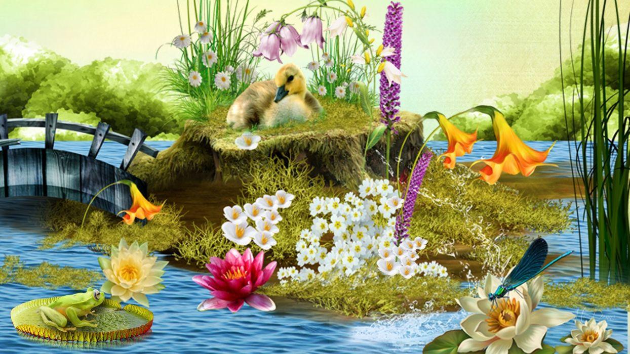 Pond wallpaper