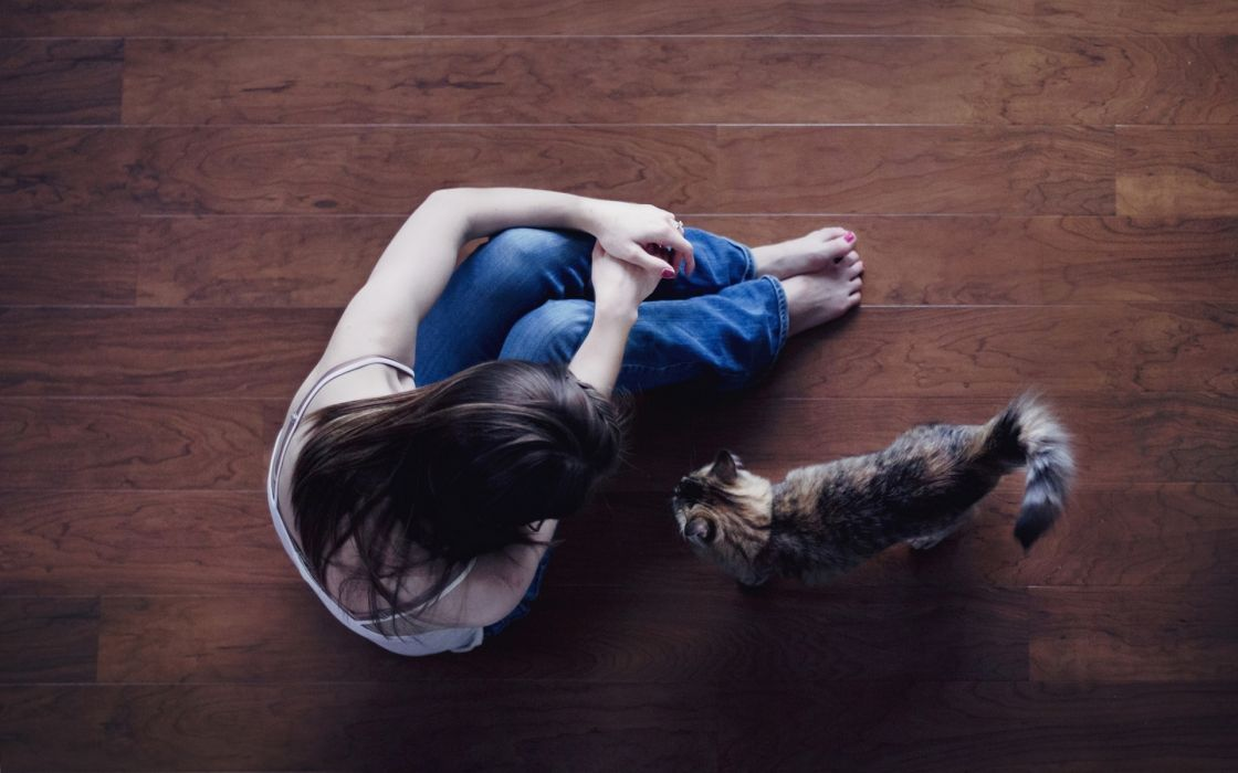 Photography-sensuality-sensual-sexy-woman-girl-sitting-floor-pants-jeans-friend-cat wallpaper