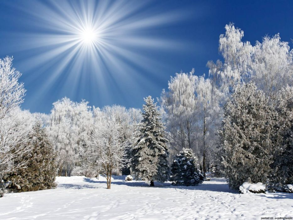 The sun over a winter forest in the mountains wallpaper